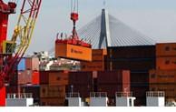 Vietnam's exports to Australia grow rapidly