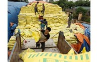 MoIT decides to impose self-defence measures on imported fertilisers