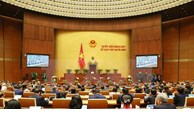 Third working day of 14th National Assembly's 11th session