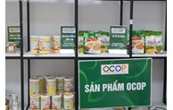 Hanoi to organize fairs introducing craft village and OCOP products