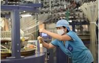 Vietnam – UK trade turnover rises sharply