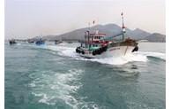 Vietnam making every effort to fight IUU fishing