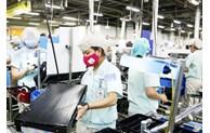 Total FDI capital rises 18.5% from same period last year
