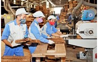 Vietnam's forestry products see a trade surplus of over 3 billion USD