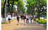 Tourists to Hanoi decrease 25% in first half
