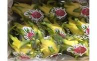 Vietnam promotes dragon fruit consumption in Australia