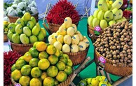 Export revenues from agricultural products increase strongly despite COVID-19