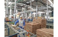 Vietnam's wood product export to France, Europe has ample room for growth