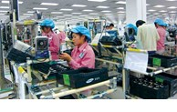 The United Arab Emirates increases imports from Vietnamese market