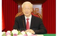 Vietnamese Party chief's article sheds light on path to socialism: DKP member