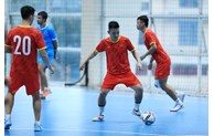 Vietnamese futsal team heads to Spain