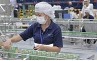 Swiss enterprises invest 1.92 billion USD in Vietnam