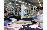 Garment-textile export turnover rises over 20% in first half from