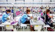 Cambodia's garment exports surpass 5 billion USD in 8 months