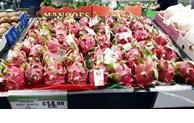 "Vietnamese dragon fruit rated ""5 stars"" in Australia"