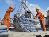 Vietnamese cement and clinker exports show drastic upturn