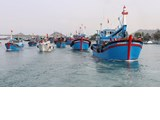 Vietnam to complete fishery management institutions in Q4