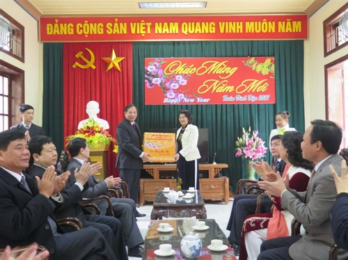 La vice-présidente Dang Thi Ngoc Thinh en visite de travail à Hai Duong
