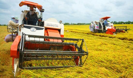 Bientôt le festival international de l'agriculture du delta du Mékong