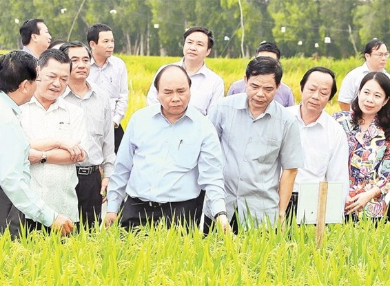 Le PM exhorte An Giang à élever la valeur ajoutée des produits agricoles