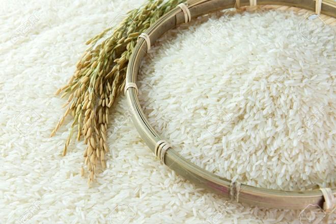 Lancement du concours de création du logo du label national du riz vietnamien