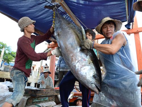 Le thon vietnamien exporté sur 138 marchés du monde