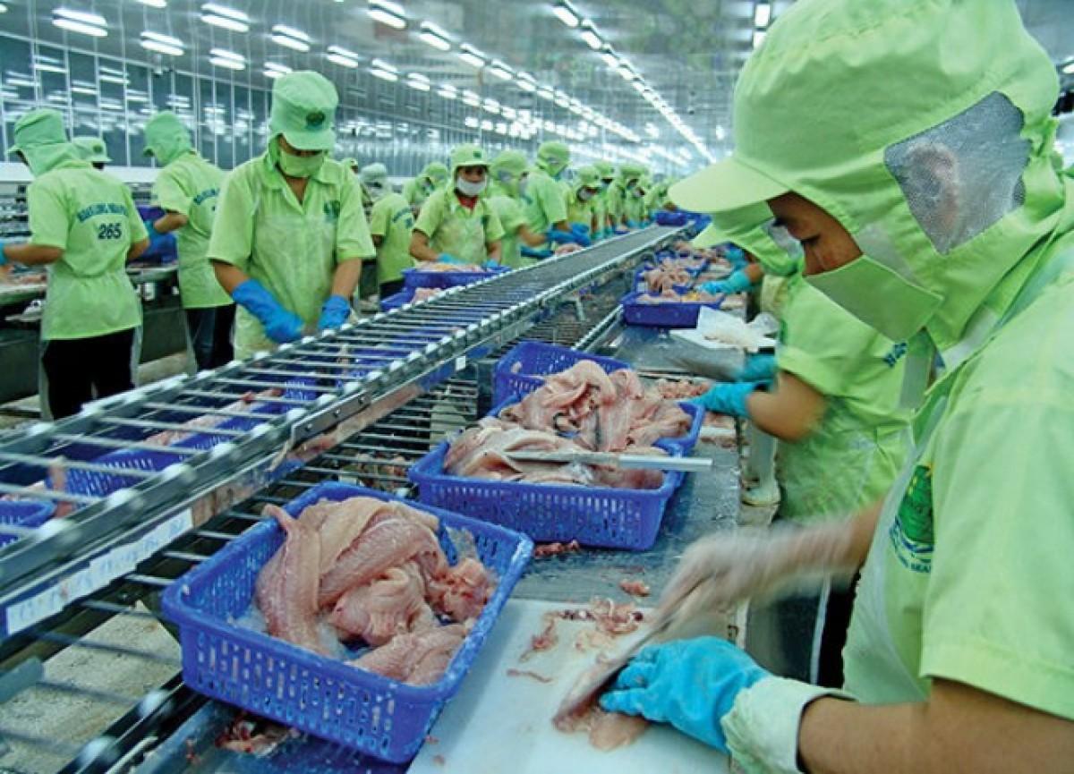 1er semestre: les exportations de produits aquatiques atteignent 3,6 milliards de dollars