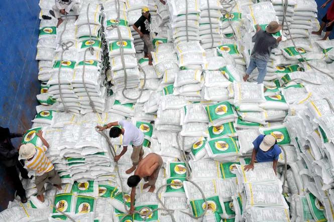 Les exportations du riz devraient atteindre 5,2 millions de tonnes en 2017