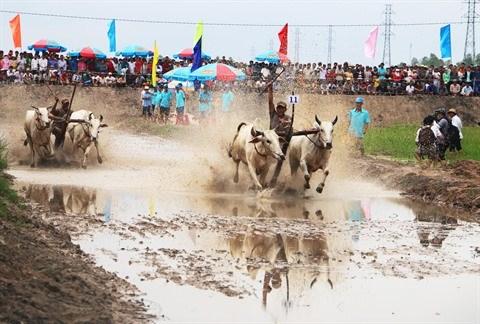 Le tourisme à An Giang, un secteur clé