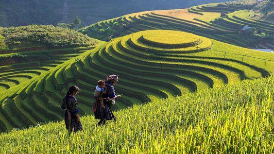 Lao Cai : De nombreuses activités lors de la Fête touristique d