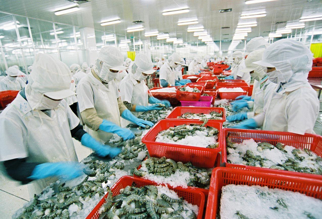 Les produits aquatiques vietnamiens très populaires aux Etats-Unis