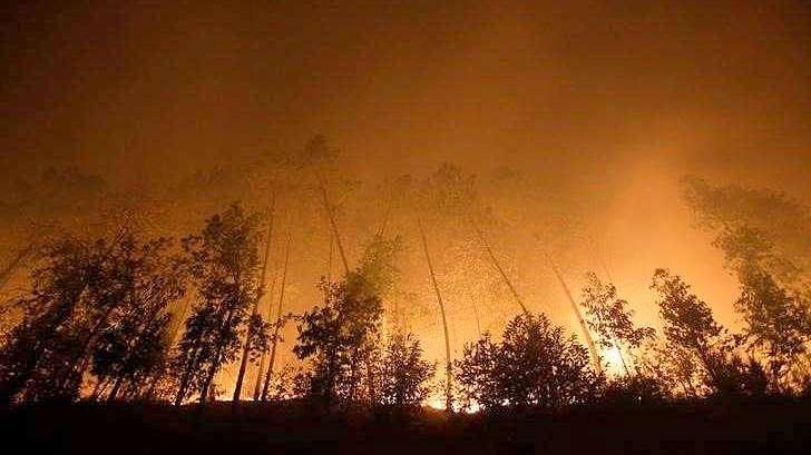 Feux de forêt au Portugal : Les condoléances du Vietnam