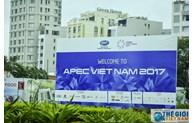Da Nang accueille en grande pompe l'Année de l'APEC 2017