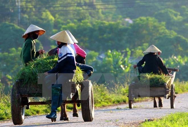 L'IFAD évalue la mise en œuvre du projet ADM à Tra Vinh