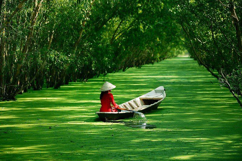 Plus de 700 milliards de dongs pour la zone touristique de Tra Su (An Giang)