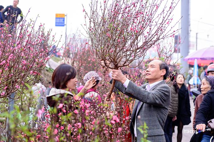Les marchés aux fleurs de Hanoï à l'occasion du Têt