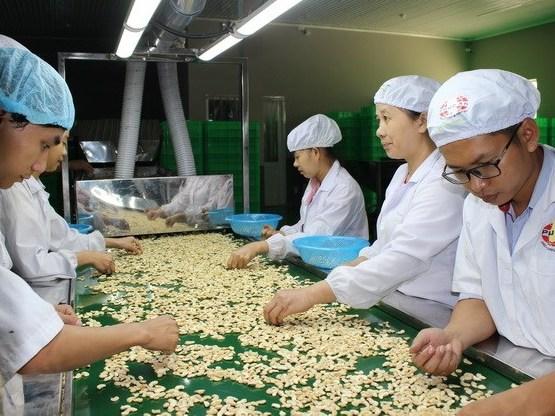Janvier: exportations de plus de 3 milliards de dollars des produits agro-sylvico-aquatiques