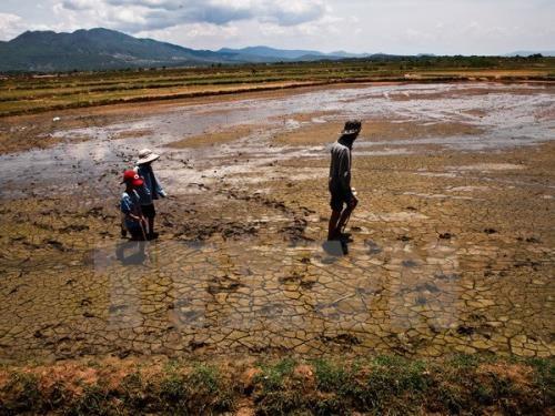 Les Pays-Bas vont aider le Vietnam dans la gestion de l