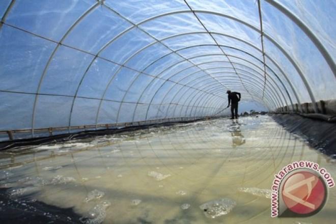 L'Indonésie importera 3,7 millions de tonnes de sel industriel