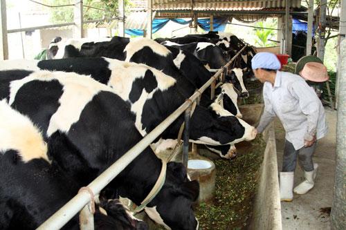 Vietnam et Malaisie accélèrent l'import-export de produits d'élevage