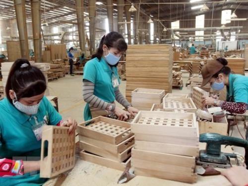 La filière bois pourrait exporter pour 9 milliards de dollars