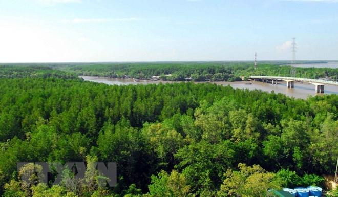 Littoral: la couverture forestière atteint 17%