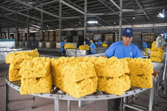 7 mois: les exportations nationales de caoutchouc atteignent le milliard de dollars