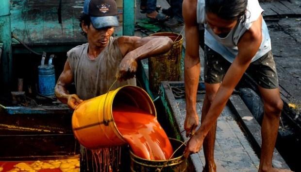Indonésie: la production d'huile de palme brute atteindrait 40-42 milliards de tonnes cette année