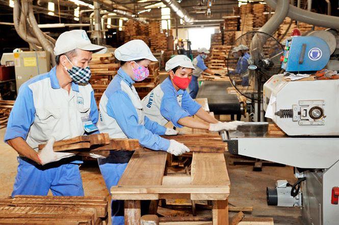 Exportations de produits sylvicoles: Le Vietnam vise 15 milliards de dollars