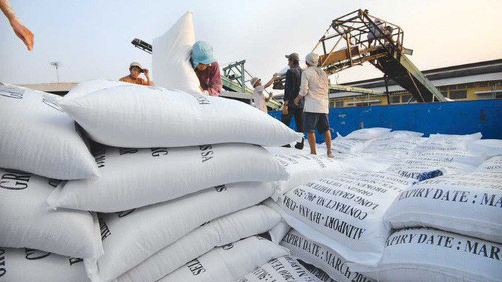 Les exportations nationales de riz atteignent 2 milliards de dollars en sept mois
