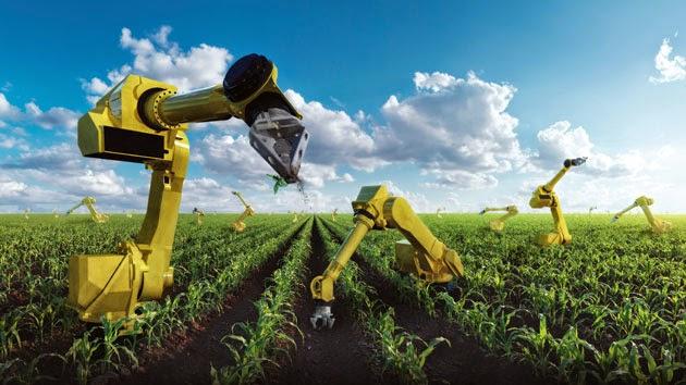 Les investissements étrangers attendus dans l'agriculture intelligente
