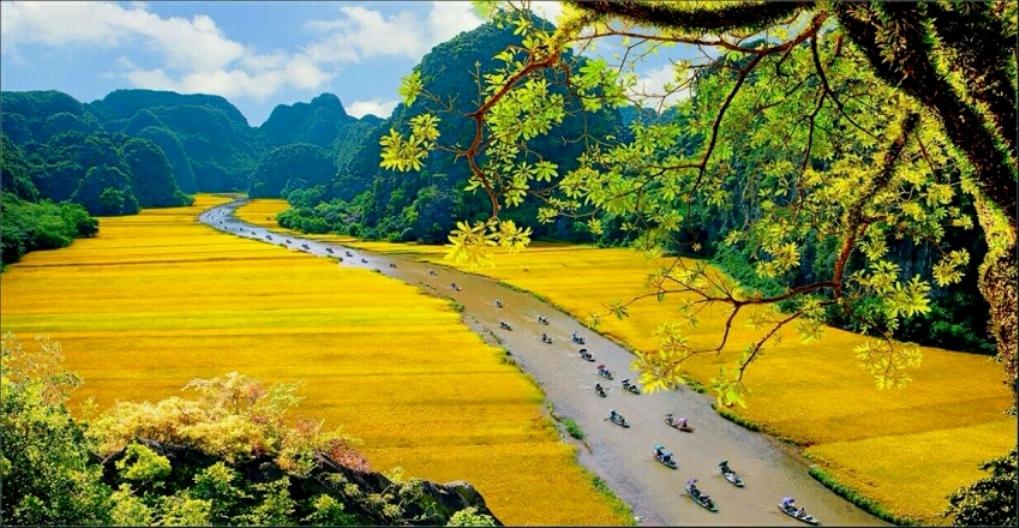 Exploiter efficacement le potentiel touristique culturel de Ninh Binh