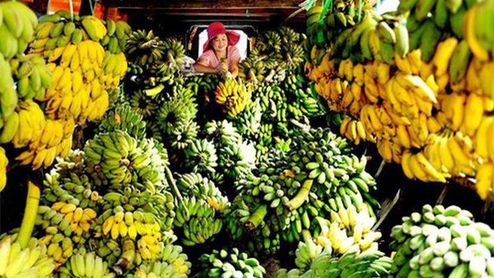 6 milliards de dollars d'exportations de produits agricoles vers la Chine