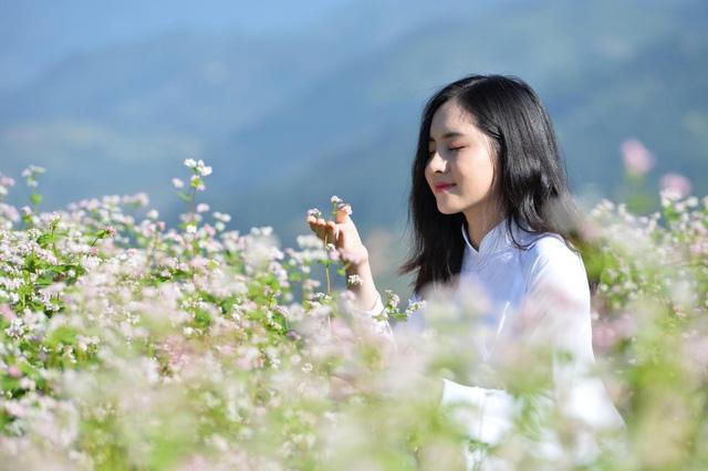 """Sélection de la Miss """"fleurs de sarrasin d'Ha Giang"""""""
